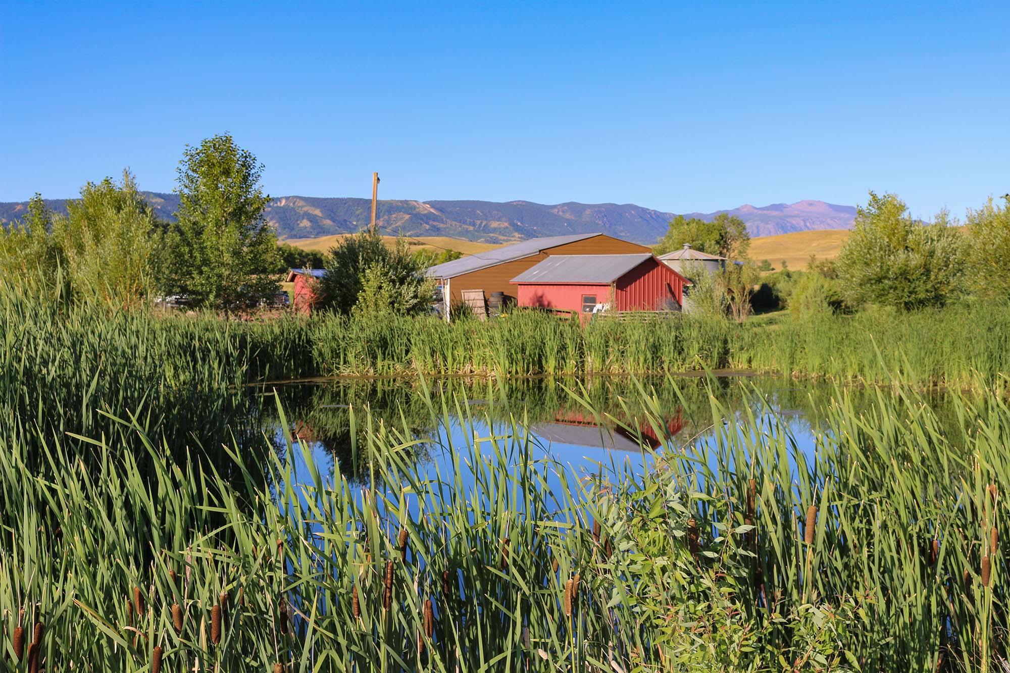 43 Meade Creek Road, Sheridan, Wyoming 82801, 3 Bedrooms Bedrooms, ,2 BathroomsBathrooms,Ranch,For Sale,Meade Creek,18-739
