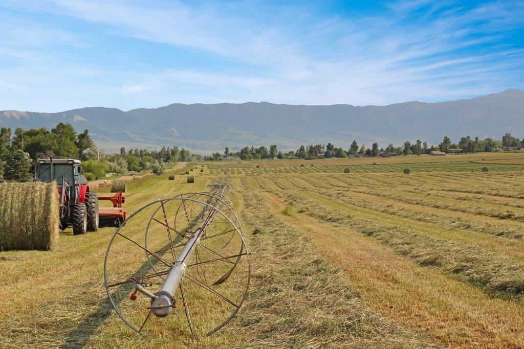 Tract 3 Upper Road, Sheridan, Wyoming 82801, ,Ranch-Land,For Sale,Upper,18-491