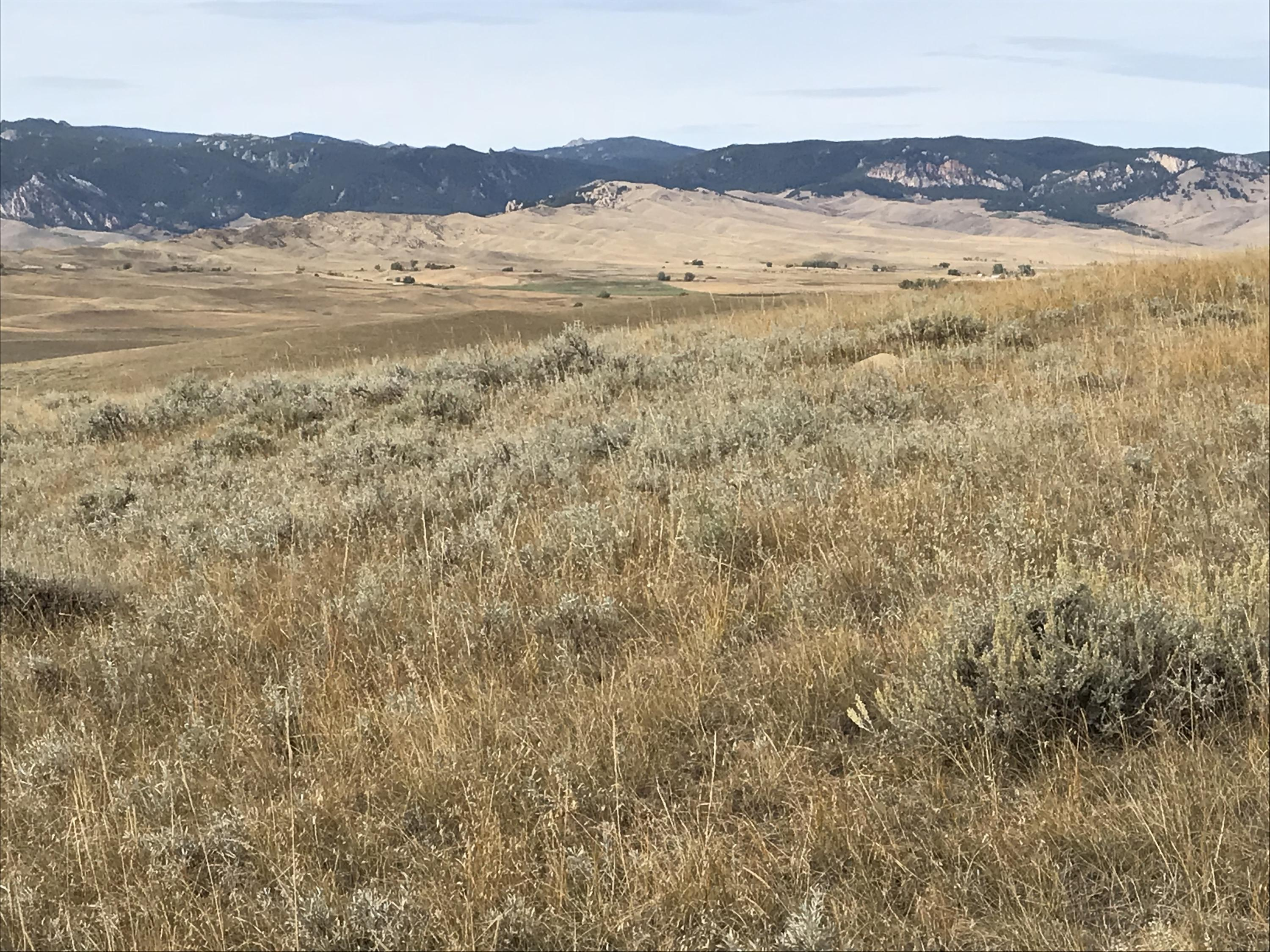 Tract J Lake Ridge, Buffalo, Wyoming 82834, ,Building Site,For Sale,Lake Ridge,18-1035
