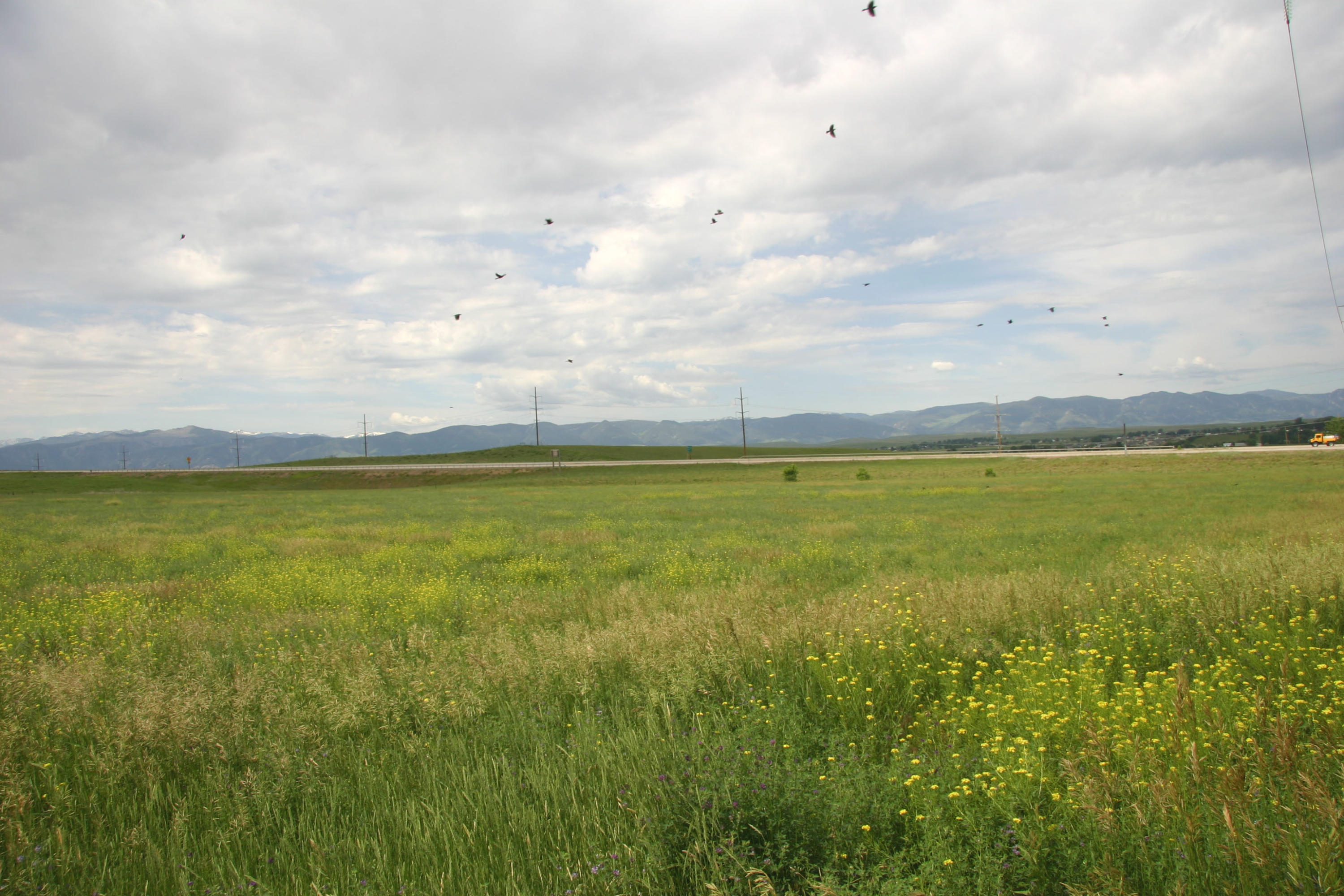 Solutions Way, Sheridan, Wyoming 82801, ,Ranch-Land,For Sale,Solutions,19-108