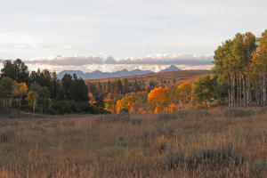 9784 GOVERNMENT SPRINGS Road, Montrose, CO 81403