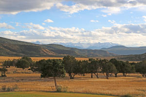 72420 BUCKHORN Road, Montrose, CO 81403