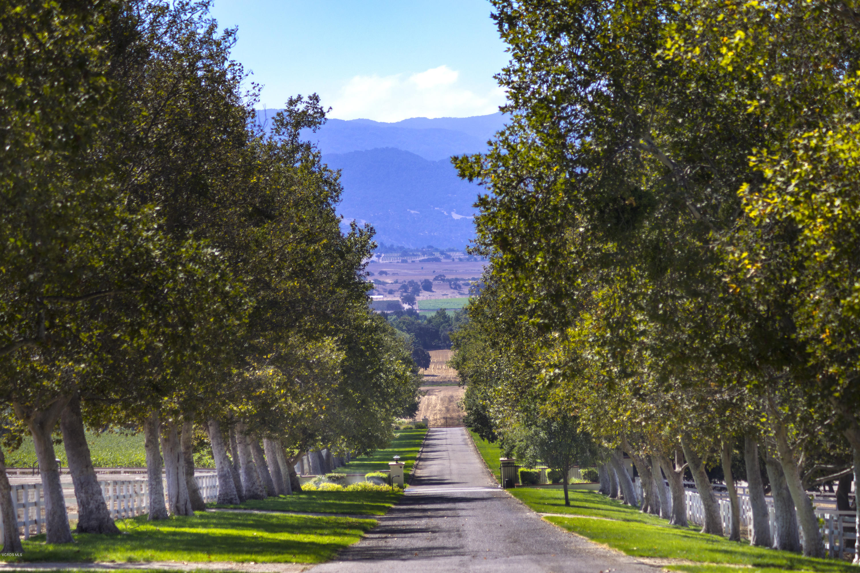 4101 Roblar Avenue - Santa Ynez, California
