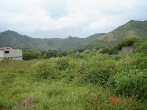 Terreno En Venta En Municipio Antolin Del Campo Paraguachi, La Mira, Venezuela, VE RAH: 09-2058