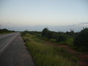 Terreno En Venta En Municipio Tubores Punta De Piedras, El Guamache, Venezuela, VE RAH: 11-143