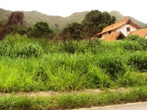 Terreno En Venta En Maracay, El Castaño, Venezuela, VE RAH: 11-5150