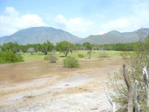 Terreno En Ventaen Margarita, Pedro Gonzalez, Venezuela, VE RAH: 13-2819