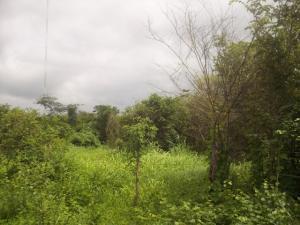 Terreno En Venta En Cabudare, Parroquia José Gregorio, Venezuela, VE RAH: 13-4527