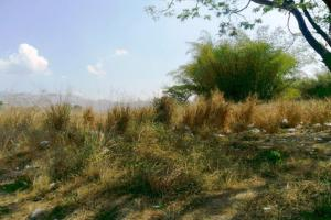 Terreno En Venta En Municipio San Diego, El Tulipan, Venezuela, VE RAH: 13-4946