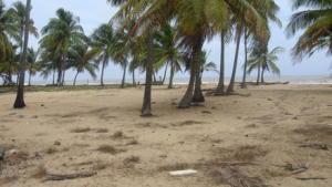 Terreno En Venta En Cupira, Playa Pintada, Venezuela, VE RAH: 13-5797