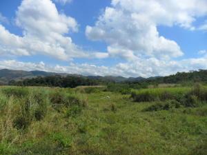 Terreno En Ventaen Municipio Bejuma, Bejuma, Venezuela, VE RAH: 13-9034