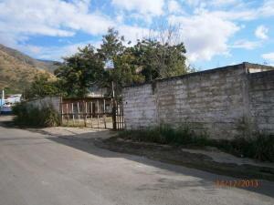 Terreno En Venta En Municipio Diego Ibarra, Mariara, Venezuela, VE RAH: 13-9128