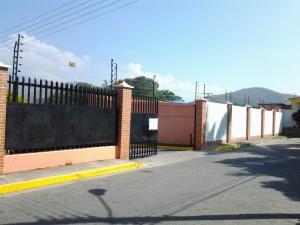 Casa En Venta En Municipio San Diego, La Cumaca, Venezuela, VE RAH: 14-600