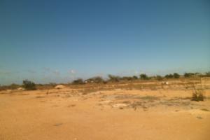 Terreno En Venta En Punto Fijo, El Cardon, Venezuela, VE RAH: 14-1210