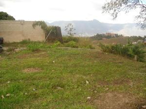 Terreno En Venta En Caracas, El Placer, Venezuela, VE RAH: 14-1496