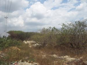 Terreno En Venta En Cabudare, Parroquia José Gregorio, Venezuela, VE RAH: 14-2103