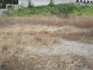 Terreno En Venta En Guatire, Las Barrancas, Venezuela, VE RAH: 14-3077