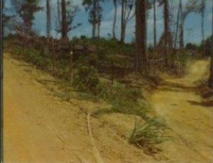 Terreno En Ventaen Higuerote, Campomar, Venezuela, VE RAH: 14-5634