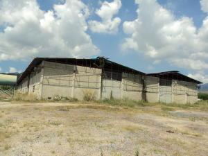 Galpon - Deposito En Venta En Guacara, Carret Guacara - San Joaquin, Venezuela, VE RAH: 14-6499