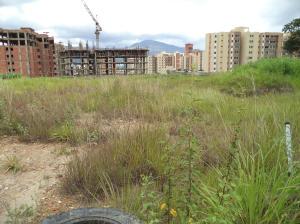 Terreno En Venta En Municipio Naguanagua, Maã±Ongo, Venezuela, VE RAH: 14-8966