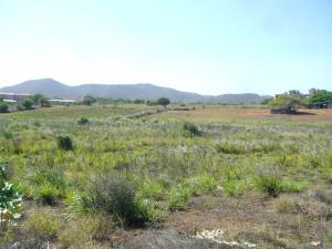 Terreno En Venta En Municipio Antolin Del Campo Paraguachi, Playa El Agua, Venezuela, VE RAH: 14-9481