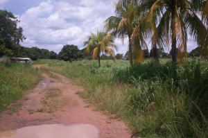 Terreno En Ventaen Ciudad Bolivar, Av La Paragua, Venezuela, VE RAH: 14-9492