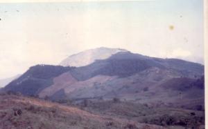Terreno En Venta En Tocuyo, Municipio Moran, Venezuela, VE RAH: 14-10328