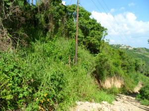 Terreno En Venta En Caracas, Caicaguana, Venezuela, VE RAH: 14-10683