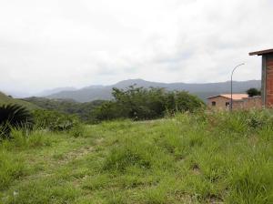 Terreno En Ventaen Caracas, Bosques De La Lagunita, Venezuela, VE RAH: 14-13244
