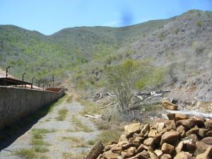 Terreno En Venta En Municipio Arismendi La Asuncion, Guacuco, Venezuela, VE RAH: 14-13387