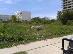 Terreno En Ventaen Higuerote, Puerto Encantado, Venezuela, VE RAH: 15-4246