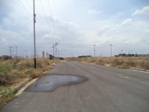 Terreno En Venta En Valencia, Flor Amarillo, Venezuela, VE RAH: 15-5604