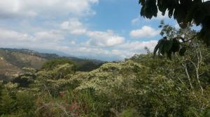 Terreno En Venta En Caracas, El Hatillo, Venezuela, VE RAH: 15-5552