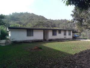 Casa En Venta En Los Teques, Los Montes Verdes, Venezuela, VE RAH: 15-5856