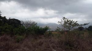 Terreno En Ventaen Municipio San Diego, Valles Del Nogal, Venezuela, VE RAH: 15-6981