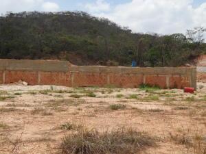 Terreno En Venta En Valencia, Guataparo, Venezuela, VE RAH: 15-6988