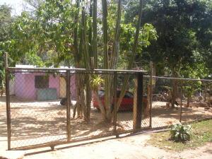 Terreno En Venta En Municipio Bejuma, Bejuma, Venezuela, VE RAH: 15-7054