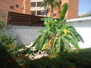 Terreno En Venta En Maracaibo, Zapara, Venezuela, VE RAH: 15-7156