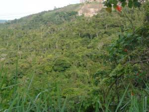 Terreno En Venta En Caracas, Parque Caiza, Venezuela, VE RAH: 15-7179