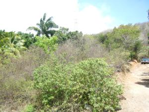 Terreno En Venta En Municipio Arismendi La Asuncion, Cocheima, Venezuela, VE RAH: 15-8575