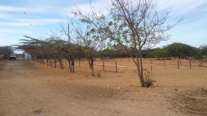Terreno En Venta En Punto Fijo, Carirubana, Venezuela, VE RAH: 15-9403