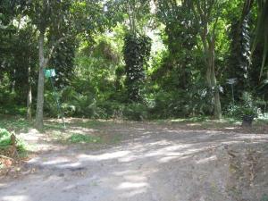 Terreno En Venta En Caracas, La Trinidad, Venezuela, VE RAH: 15-10221