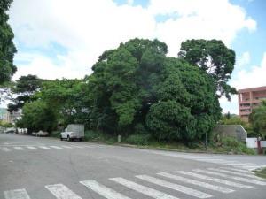 Terreno En Ventaen Caracas, Sorocaima, Venezuela, VE RAH: 15-10980
