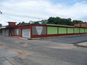Casa En Venta En Municipio Diego Ibarra, Mariara, Venezuela, VE RAH: 15-11187