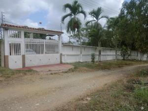 Casa En Venta En Barlovento, Municipio Capaya, Venezuela, VE RAH: 15-12157