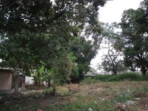 Terreno En Ventaen Ciudad Bolivar, Casco Central, Venezuela, VE RAH: 15-12517