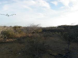 Terreno En Ventaen Punto Fijo, Guanadito, Venezuela, VE RAH: 15-12706