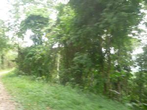 Terreno En Venta En Guarenas, Chalet Ville, Venezuela, VE RAH: 15-13079