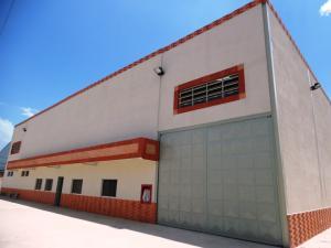 Galpon - Deposito En Venta En Valencia, Zona Industrial, Venezuela, VE RAH: 15-13262