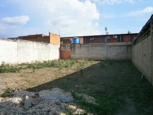 Terreno En Venta En Municipio Los Guayos, Paraparal, Venezuela, VE RAH: 15-13503